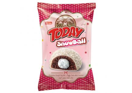Today Snowball 50g*24ks - kokos